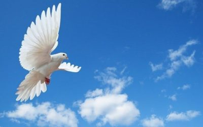 Pasqua, un augurio di pace e rinascita al di là di ogni confine e divisione
